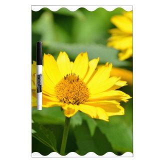 Pretty False Sunflower Dry-Erase Whiteboard