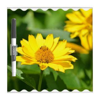 Pretty False Sunflower Dry Erase Whiteboards