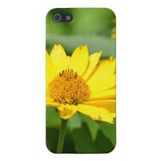 Pretty False Sunflower Cover For iPhone 5