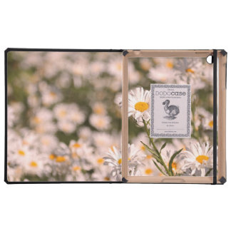 Pretty Field of Daisies iPad Cover