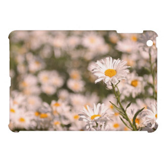 Pretty Field of Daisies Cover For The iPad Mini