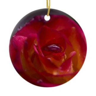 Pretty Fiery Red Rose Christmas Ornaments