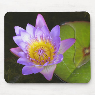 Pretty Floral Water Lily Mousepad