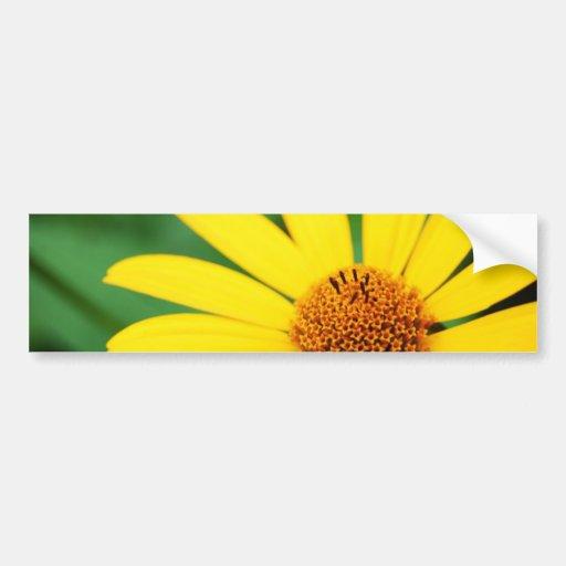 Pretty-flower-1303 YELLOW DAISY FLOWER SPRING GREE Bumper Stickers