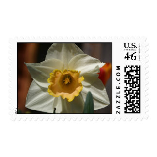 Pretty Flower Stamps