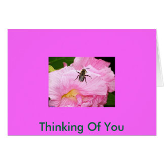 Pretty Flower With Bee, Thinking Of You Card