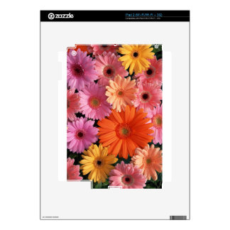Pretty Flowers Decal For The iPad 2