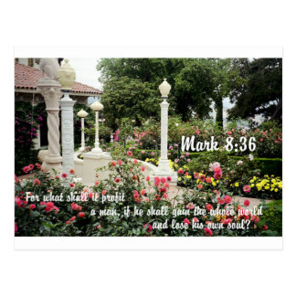 Pretty flowers garden Christian bible verse photo Postcard