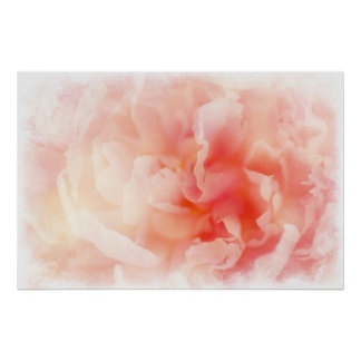Pretty Fluffy Pink Peony Poster