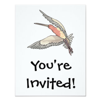 pretty flying hummingbird card