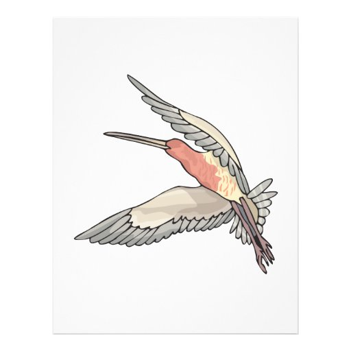 pretty flying hummingbird personalized flyer
