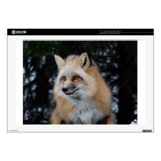 Pretty Fox Profile Laptop Decals