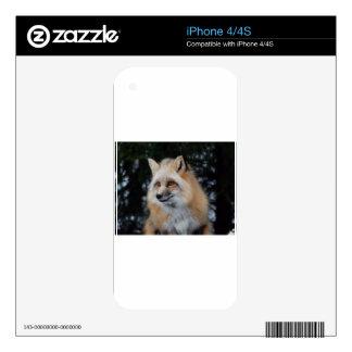 Pretty Fox Profile Skin For The iPhone 4
