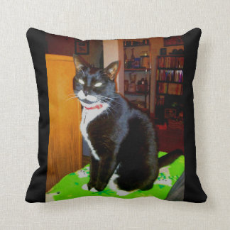 Pretty Girl Lucy Pillows