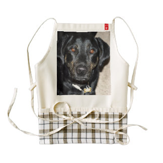 Pretty Girl Splash Zazzle HEART Apron