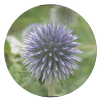 Pretty Globe Thistle Party Plate