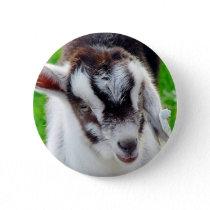 Pretty Goat Kid Button