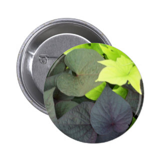 Pretty Green Leaves Button