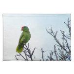 Pretty Green Parrot American MoJo Placemats