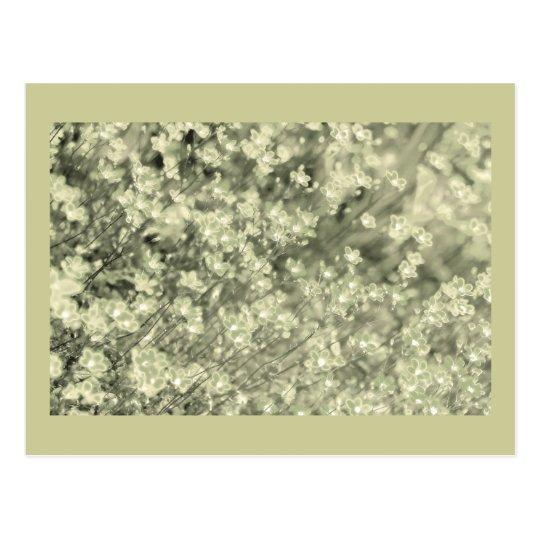 Pretty Green sparkle Fairy Flowers, template Postcard