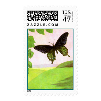 Pretty Green Vintage Butterfly Postage Stamps