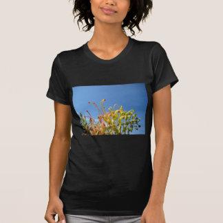 Pretty Grevillia T-Shirt