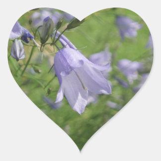 Pretty harebell flower photo heart sticker