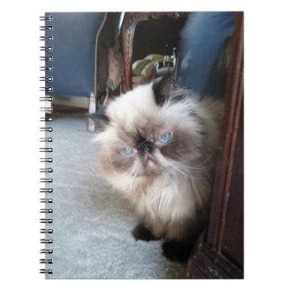 Pretty Himalayan Notebook