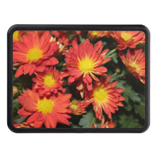 pretty holiday orange daisy flowers. floral garden hitch covers
