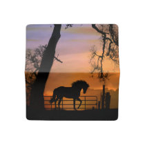 Pretty Horse Check Book Cover