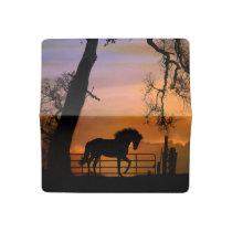 Pretty Horse Check Book Cover