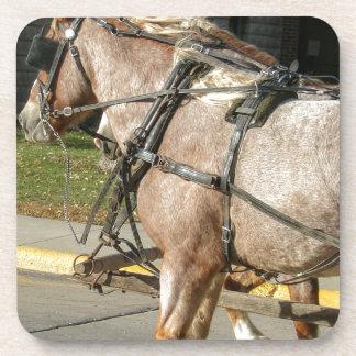 Pretty Horses Drink Coaster