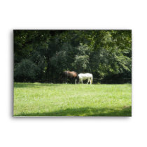 Pretty Horses Grazing Envelope
