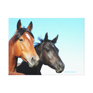 Pretty Horses Wrapped Canvas