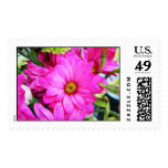 Pretty Hot Pink Flower Postage Stamps