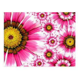 Pretty Hot Pink Fuchsia Flower Kaleidoscope Design Postcard