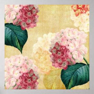 Pretty Hydrangea Floral Poster