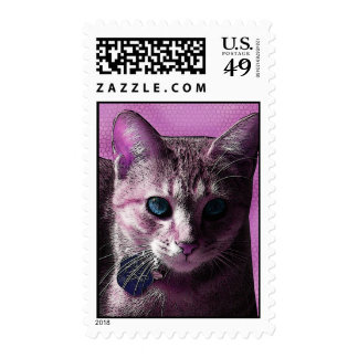 Pretty in Pink Blue-eyed Kitty Cat Postage Stamp