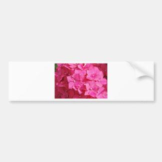 Pretty in Pink Car Bumper Sticker
