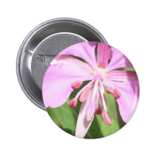 Pretty in Pink Button