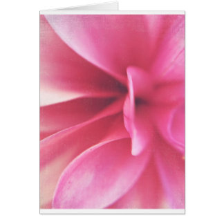 Pretty in Pink Card