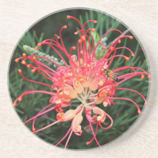 Pretty in Pink Coasters