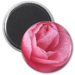 Pretty in Pink Fridge Magnet
