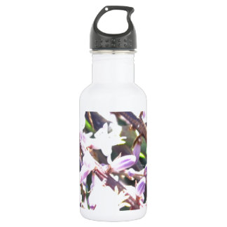 Pretty in Pink Ginger 18oz Water Bottle
