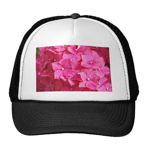 Pretty in Pink Trucker Hats
