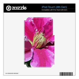 PRETTY IN PINK iPod TOUCH 4G DECALS
