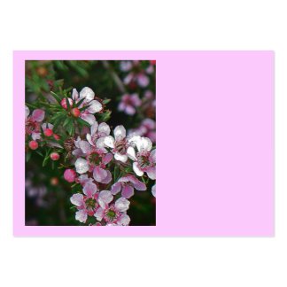 Pretty in pink large business card