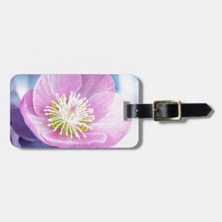 Pretty In PInk Luggage Tag