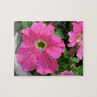 Pretty in Pink Puzzle