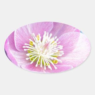 Pretty In PInk Oval Sticker